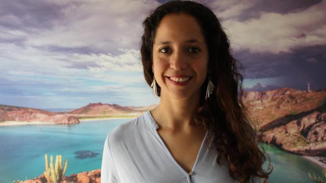 Prepara la Sociedad de historia Natural Niparajá, Plan de Acción de Manejo integral, para la cuenca de La Paz (PAMIC).