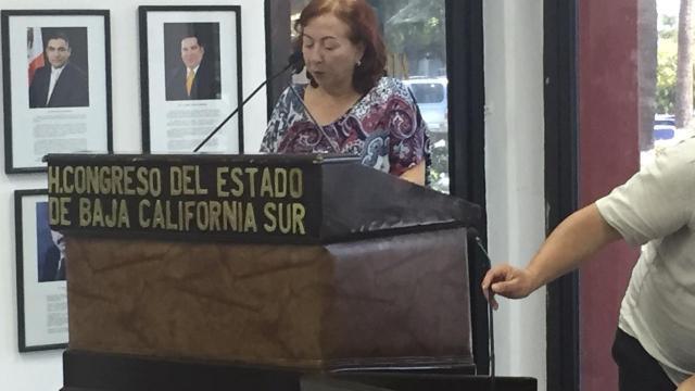 Solicita Diputada local que Golfo de California sea de dominio nacional