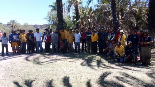 Incendio en palmar de San Ignacio afectó casi 72 hectáreas