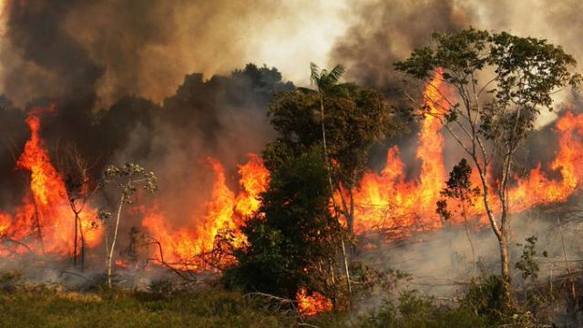 Brasil bajo presión internacional por los incendios en la Amazonía RIO BRANCO, BRASIL (AFP)