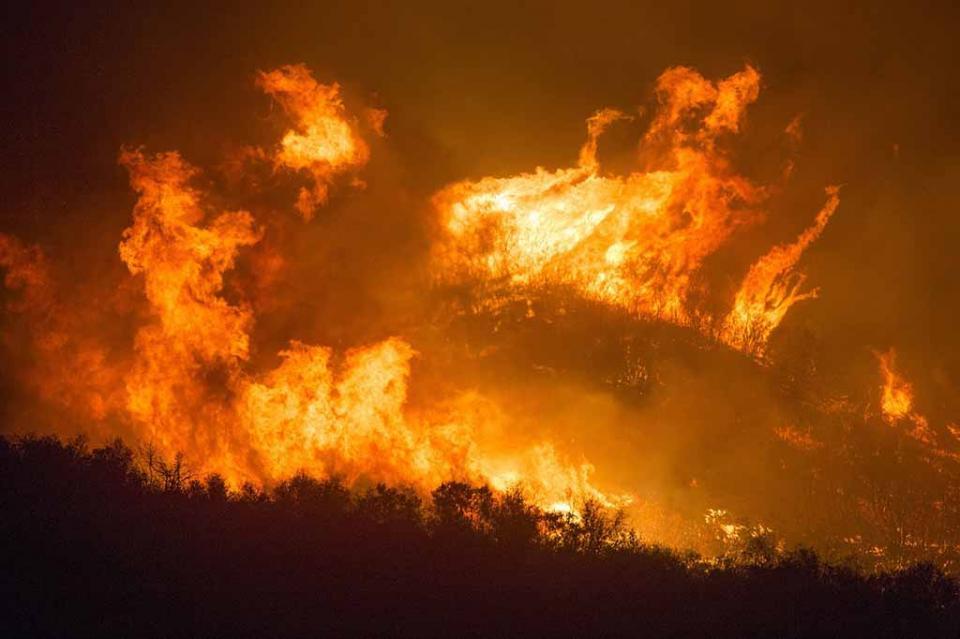 14 mil hectáreas en Baja California son afectadas por Incendios