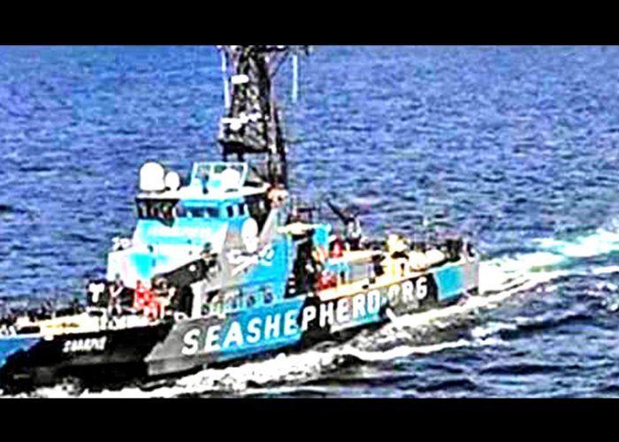 Atacan a tiros a buque de la Profepa en el Alto Golfo de California