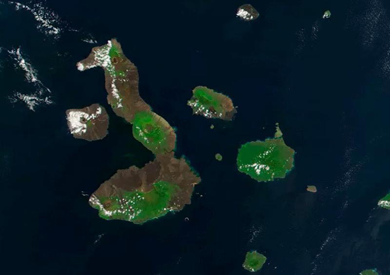 Retiran más de 8 toneladas de basura de islas de Galápagos