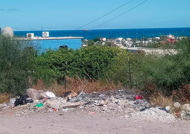 Vecinos de la Colonia Colina de la Cruz, piden el apoyo para retirar basura