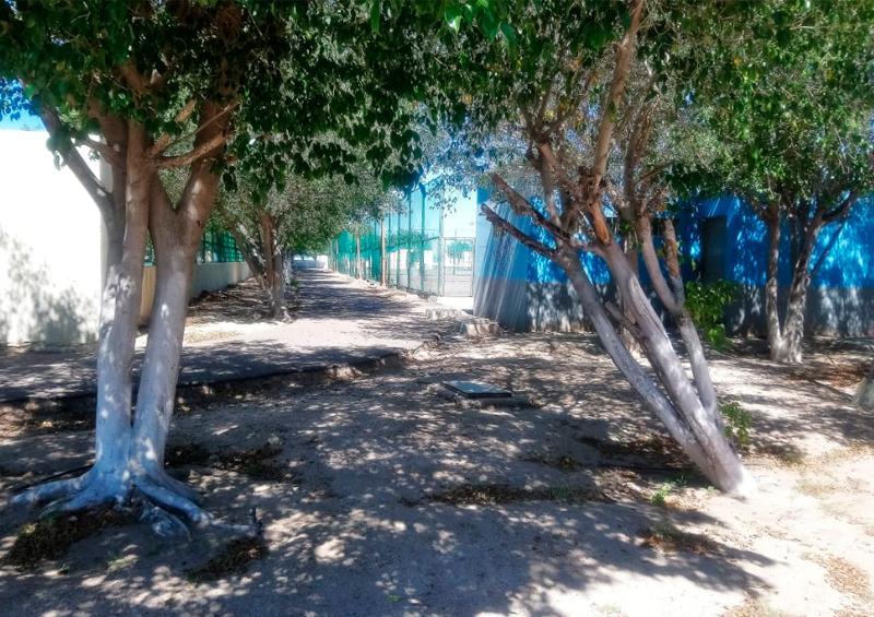 Son muchas las necesidades del parque Nuevo Sol: Armando García