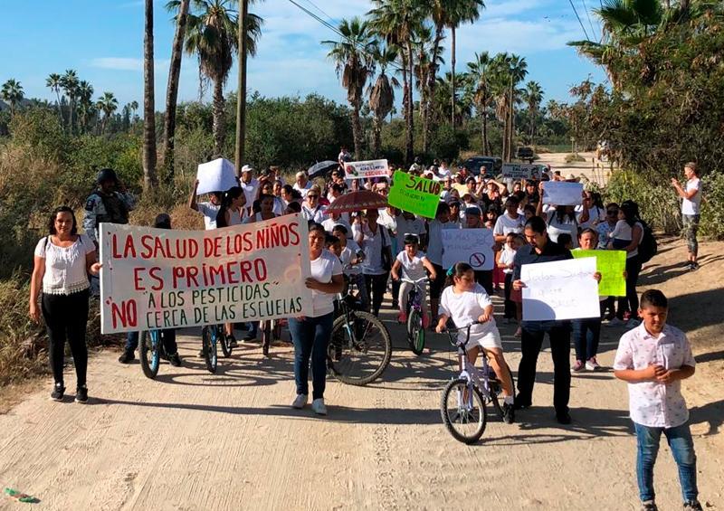 Manifestación contra agroquímicos en Todos Santos