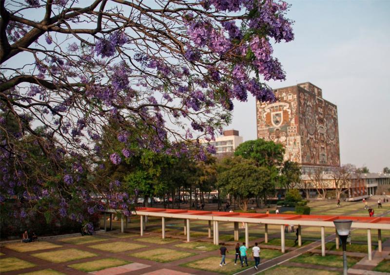 Brindará UNAM a universitarios prueba para Covid-19