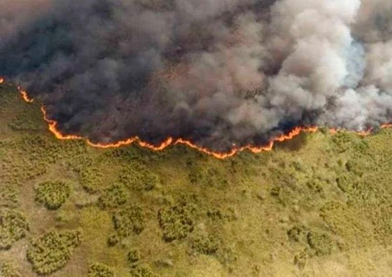 Tratan de apagar 35 incendios forestales en México