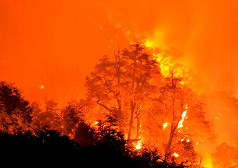 2 incendios forestales activos en la zona de exclusión de Chernóbil