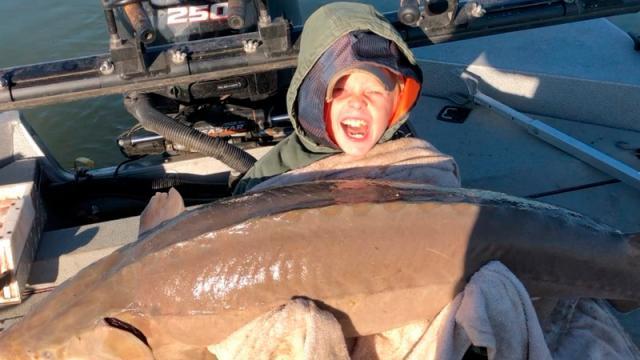 Un niño de 9 años pesca un enorme esturión de 36 kilos en EE.UU