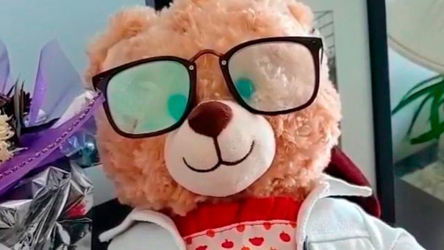 oso de peluche robado