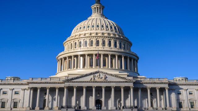 Asume el nuevo Congreso de Estados Unidos en vísperas de una semana decisiva
