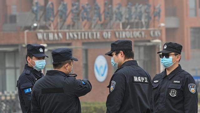 Expertos de la OMS visitan el Instituto de Virología de Wuhan