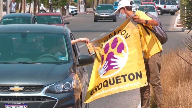 Croquetón recaba dinero para apoyar a perros desamparados