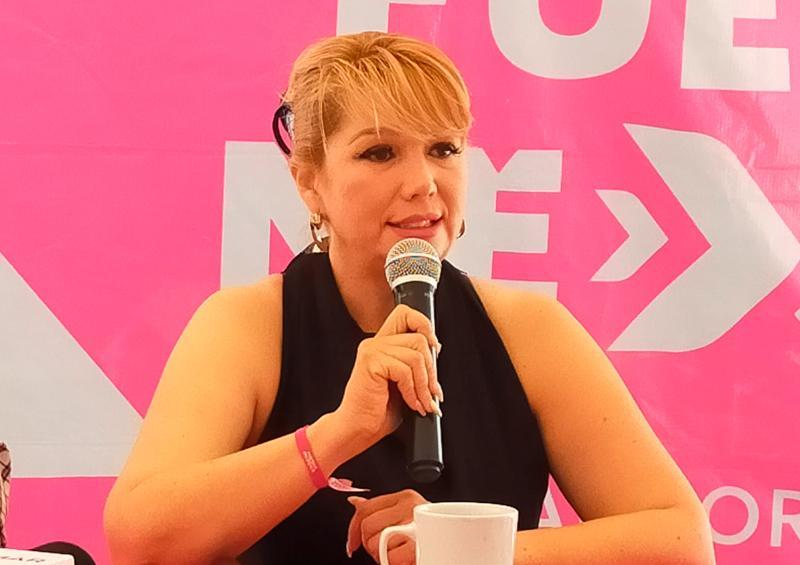Propone Elizabeth Wayas, Casas Rosas